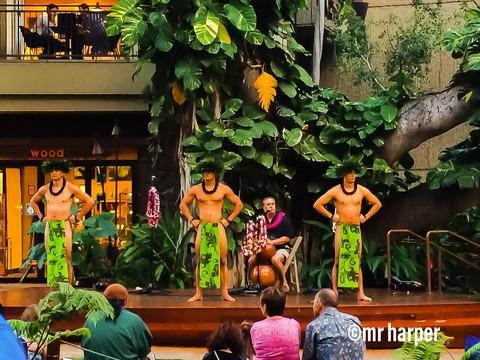 5ハワイ ワイキキ フラダンス