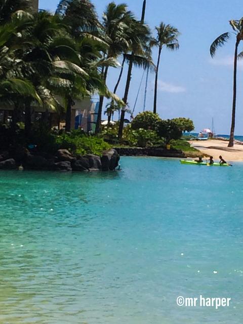 Hawaii Hilton lagoon 4