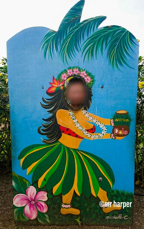 Hawaii-DOLE99