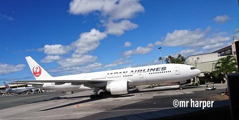 ホノルル国際空港 JAL