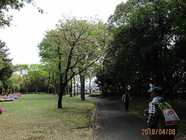 IMG_0127