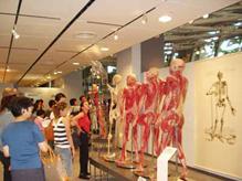 2003年東京展