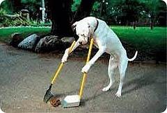 お掃除♪お掃除♪