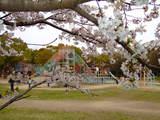 大和泉公園