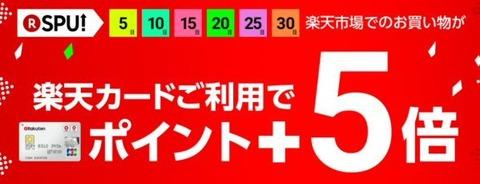 rakuten-card-599x229