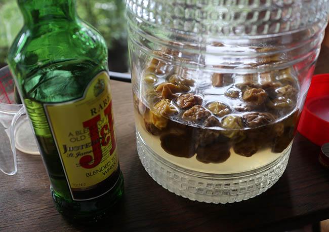 梅シロップ 白カビ発生 対処法 スコッチウイスキー