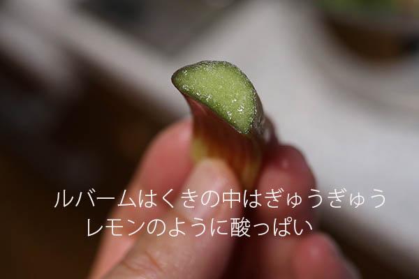 ルバームの茎 ジャム作り方 レシピ