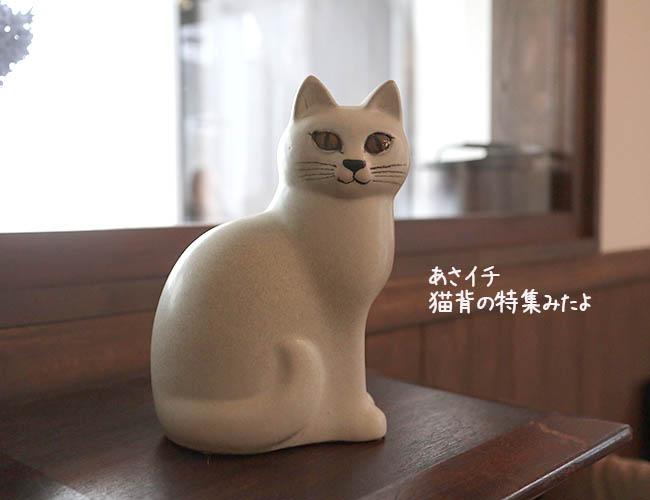 NHKあさイチ 猫背 3タイプ 解消方法