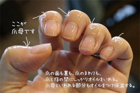NHKあさイチ 爪オイルケア 爪を丈夫にする