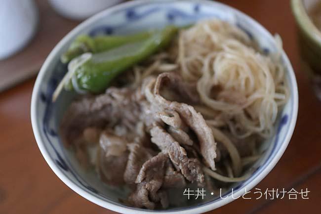 低FODMAP レシピ 牛丼 ごぼうなし