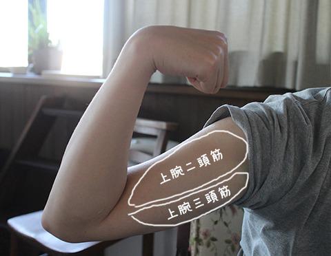 NHKあさイチ 二の腕 太いたるみ 鍛え方 解消方法 1