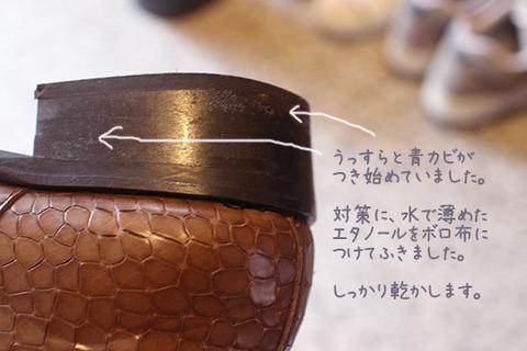 カビの除去 対策 靴 ブログ