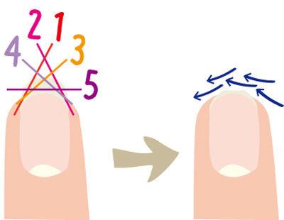 爪の正しい切り方とヤスリのカケ方