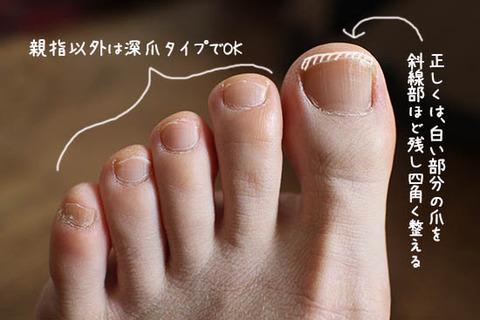 NHKあさイチ 足の爪の正しい切り方