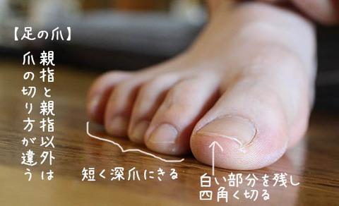 足の爪の正しい切り方とは? NHKあさイチ