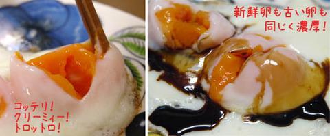 冷凍卵 レシピ 写真 ためしてガッテン紹介
