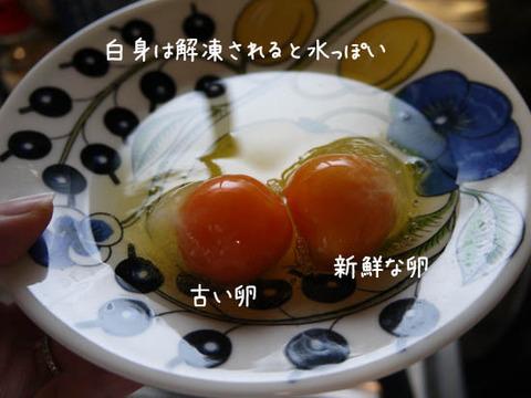 冷凍卵 レシピ NHK紹介