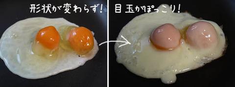 冷凍卵 レシピ 写真
