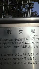 1cd1b928.jpg