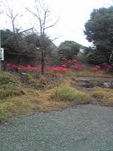 200924-2