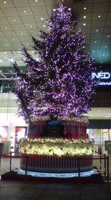 20081105クリスマスケーキ