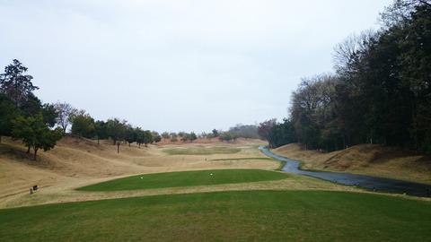 新武蔵丘ゴルフコースの写真