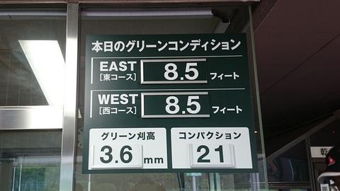 紫あやめ36EAST (1)