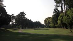 ザ・ゴルフクラブ竜ヶ崎(8番ホール)