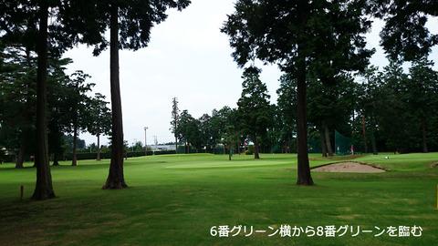 林間コース風の佇まいを魅せる芦刈ゴルフ