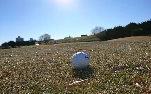 冬の赤羽ゴルフ倶楽部