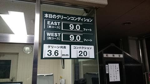 紫あやめ36(2014年7月17日)