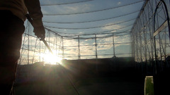 朝陽の当たる練習場