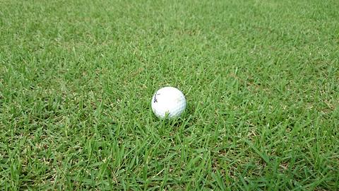 芦刈GCの天然芝