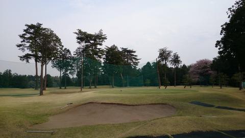 芦刈ゴルフコース (4)