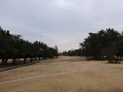 浦和ゴルフ倶楽部はグリーンが凍っていた