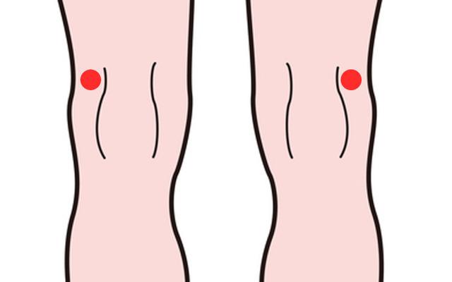 ヒアルロン酸を打つ場所(膝)
