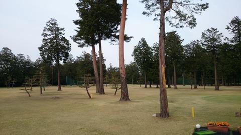 芦刈ゴルフコース (3)
