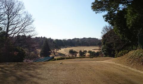 八千代ゴルフクラブ15番ホール