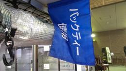バックティー使用の旗