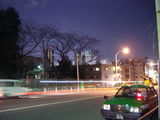 新宿区戸山町から新宿高層ビル群を望む