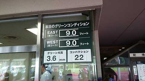 紫あやめ36(2015年6月24日むらさきグリーン)