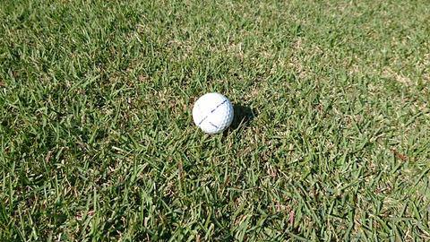 芦刈ゴルフは全体的に高麗芝