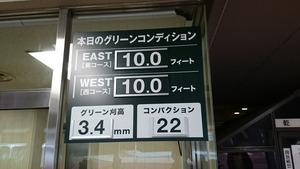 紫あやめ36EAST(東) (2)