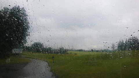 前半はシトシト雨模様