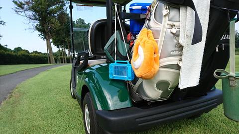 阿見ゴルフクラブで昆虫採集