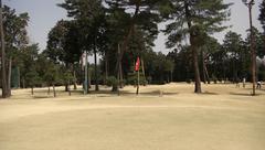 芦刈ゴルフのグリーン