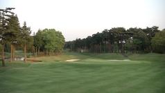ザ・ゴルフクラブ竜ヶ崎(18番ホールグリーン後方から)
