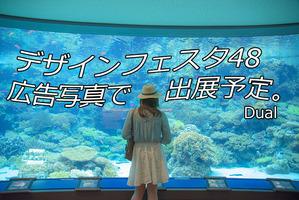 美ら海水族館2 ツイッター用2