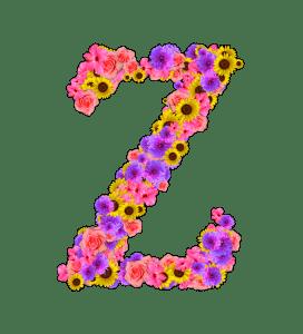 FM_OOMOJI_Z_272_300