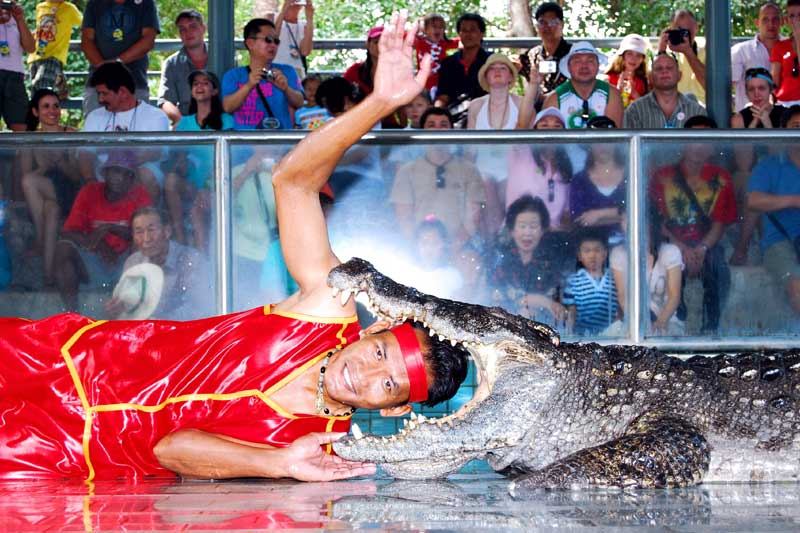 Million Years Stone Park & Pattaya Crocodile Farm 01
